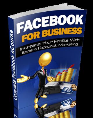 Facebook For Business Paperback1